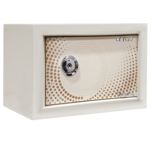 CP PLUS Quadra Key Home Safe - TERRIER II